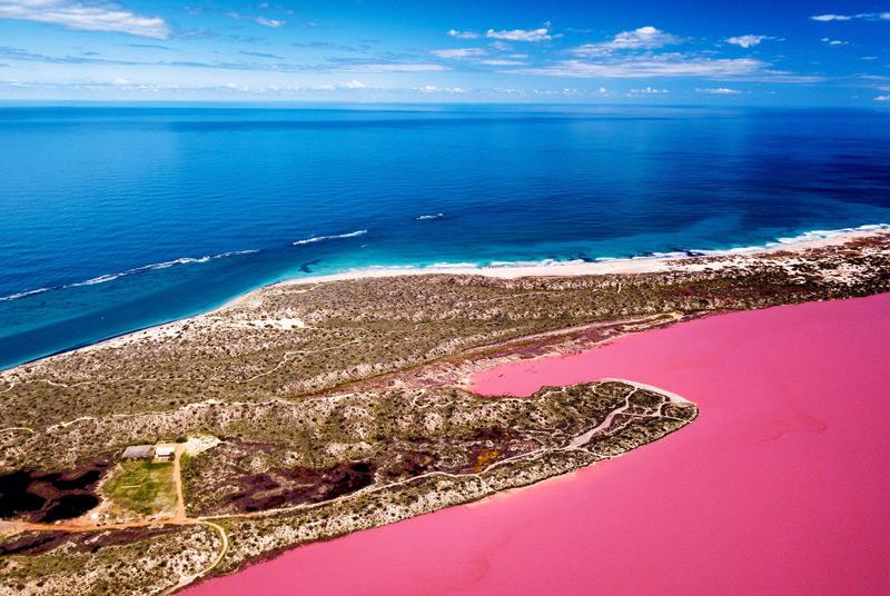 Pink Lake -  Hutt Lagoon in Australia